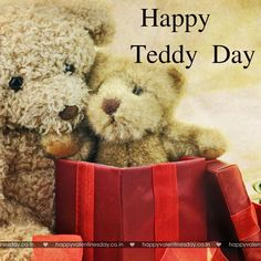 Valentine Day Week, Happy Valentines Day Card, Valentines Day Pictures, Teddy Day, Valentine's Day Greeting Cards, Cute Teddy Bears, Love, Funny, Happy Birthday