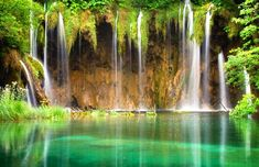 Croatia - Although the park is best known for its lakes and waterfalls, it is home to a wide range of birds and animals