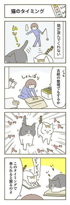 うちの猫がまた変なことしてる。2 (メディアファクトリーのコミックエッセイ)   卵山 玉子  本   通販   Amazon Animals And Pets, Cute Animals, Cat Logo, Japanese Language, Cat Memes, Funny Cute, Comic Strips, Neko, Sims