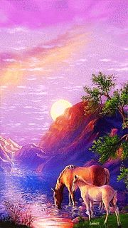 and Foal Drinking from a Lake animals nature animated lake horse gif mare foal Beautiful Nature Wallpaper, Beautiful Gif, Beautiful Horses, Beautiful Pictures, Simply Beautiful, Gif Pictures, Nature Pictures, Gif Bonito, Lake Animals