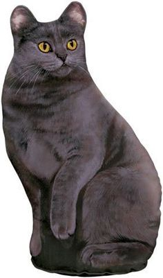 Fiddlers Elbow FE77 Grey Cat Doorstop by Fiddler's Elbow, http://www.amazon.com/dp/B003XLD6T0/ref=cm_sw_r_pi_dp_CLgGqb0EEV21M