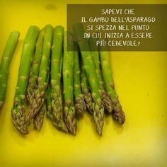 cucina | asparagi | asparagus | cucina italiana | italian cuisine | socialfood | socialeating | socialcooking Cooking Together, Food Inspiration, Vegetables, Rome, Vegetable Recipes, Veggies
