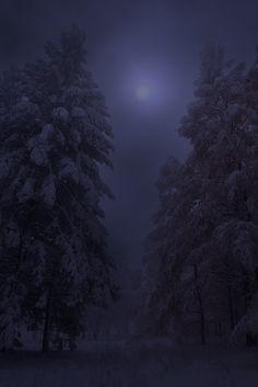 lori-rocks:   Winter Magic By Mikhail... - Tolling Bells