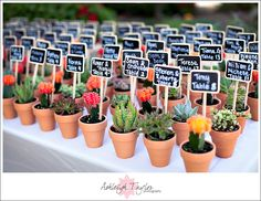succulent escort cards - Perfection