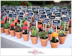 ¿Qué tal obsequitar a tus invitados con una planta acompañada de una frase bonita?