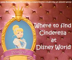 Click this pin for a complete list of all the places to see Cinderella at Walt Disney World Resort; See: http://www.buildabettermousetrip.com/princess-cinderella-at-disney-world  #Cinderella