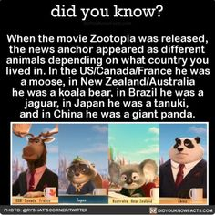 When the movie Zootopia was released, the news anchor appeared as different animals depending on what country you lived in. In the US/Canada/France he was a moose, in New Zealand/Australia he was a. Disney And Dreamworks, Disney Pixar, Walt Disney, Punk Disney, Disney Fun Facts, Disney Memes, Disney Love, Disney Magic, Disney Theory