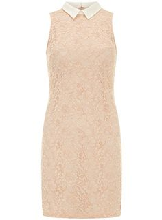 Blush lace shift dress - The New Neutrals  - Clothing