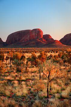 As If Set Afire Uluru-Kata Tjuta National Park, Northern Territory, Australia Light gleams across the landscape of shrubs and trees as it kisses the face of Kata Tjuta on sunrise. Shutter Speed, Landscape Photographers, Landscape Art, Fine Art Photography, Worlds Largest, Monument Valley, National Parks, Australia
