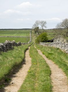 A pleasant White Peak track leading from Deep Dale to Taddington, Derbyshire, England by l4ts