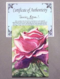 Original ACEO Pink Rose Flower Garden Floral Miniature Watercolor Reinecke COA #Miniature