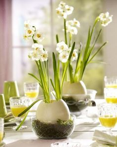 Ostrich egg centerpieces with weeds make a monster suitable centre piece