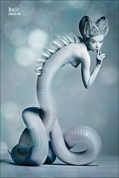 Naga; Adam Blamed Eve. Eve Blamed The Serpent, The Serpent didn't Have A Leg To Stand On. ~ GOD