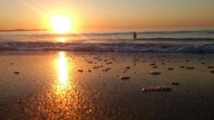 GOLDEN SWIM - Gotta just get in there.anybody keen to join me? Beach Tops, Open Up, West Coast, Surfing, Join, Swimming, Sunset, Outdoor, Swim