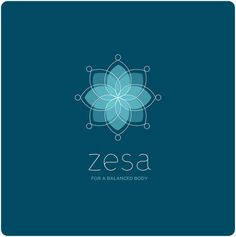zesa Branding by Fernando Gonzalez, via Behance