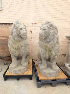 """Pair of French Stone Lions  $5400  Here we have a pair of sitting lion statues made from exterior grade plaster with granite aggregate. They are frost-free and non-absorbent making them perfect for the outside of your home!  Origin: France Each measurement at: 52"""" H x 21"""" W x 38"""" L"""