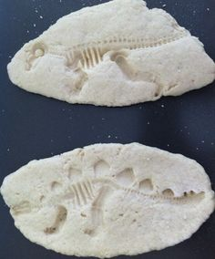 DIY Dinosaur Fossils - Don't Mess with Mama