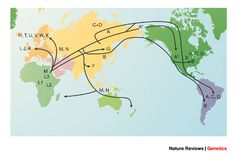 Genetic ancestry and the search for personalized genetic histories