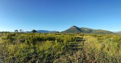 Half way point of my run this am. #stunning #veld #Nature #explore #trailrun #limpopo #getfit