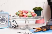 IDAR - Miele e Farina - Il marchio nasce dal desiderio di valorizzare la produzione di specialità dolciarie, creando una linea di prodotti che esalti la freschezza delle materie prime sceltissime