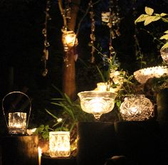 hire vintage bowls to light a woodland pathg