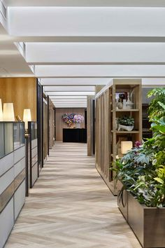 Hong-Kong based design house AB Concept opens their newly renovated creative studio, dotted with garden plants, vintage furniture, bicycles, books & art. Ab Concept, Open Concept, Modern Office Design, Open Office, Co Working, Corporate Design, Creative Studio, Design Firms, Office Interiors