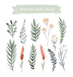set of handpainted watercolor vector flowers and leaves. design element for summer wedding spring congratulation card. perfect floral elements for save the date card. Flower Vector Art, Vector Flowers, Floral Vector Free, Watercolor Flower Vector, Watercolor Leaves, Illustration Blume, Watercolor Illustration, Panda Design, Clip Art