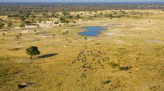 ©Wilderness Safaris | Zimbabwe