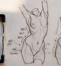 Figure drawing✏️Great reference for the women's body Anatomy Sketches, Anatomy Drawing, Art Sketches, Art Drawings, Figure Drawing Reference, Art Reference Poses, Anatomy Reference, Body Drawing, Life Drawing