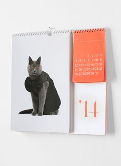 We designed a capsule collection for United Bamboo's Catclub. The collection includes a 2014 calendar shot by Noah Sheldon, life-size cat pillows, a stationery set and foil stamped stickers and wrapping paper.