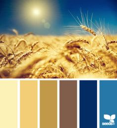 Beachy colours