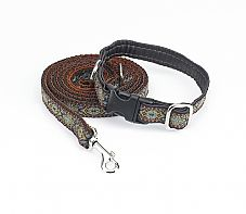 Gorgeous and sophisticated Ittly Scroll dog Collar & Leash