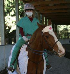 halloween-horse-medical.jpg 440×460 pixels