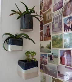 Cute idea for keeping houseplants away from cats/kids.