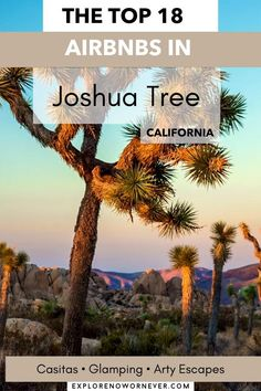Heading to Joshua Tree National Park? From vintage Airstreams and cozy cabins to luxe retreats and a stargazer bubble, this is a list of amazing Airbnbs that guests love most. Read more here. Where to stay in Joshua Tree | Best Joshua Tree Airbnbs | Joshua Tree travel tips Joshua Tree National Park, National Parks, Unique Hotels, Stargazer, Cozy Cabin, Glamping, Cabins, Travel Tips, Bubbles