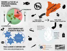 El malbaratament alimentari a Catalunya en una imatge. Amb menys d'un terç del total de menjar malbaratat a la Unió Europea, els Estats Units i el Regne Unit, n'hi hauria prou per evitar la desnutrició al món
