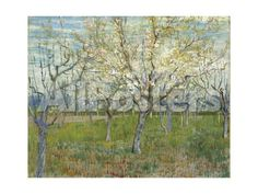 The Pink Orchard, 1888 by Richard Leblanc Landscapes Giclee Print - 61 x 46 cm