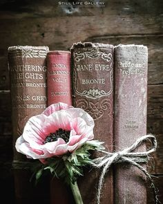 Happy birthday to Charlotte Brontë, and Happy Easter to you! Wishing you a wonderful day X Jane Eyre, Book Aesthetic, Aesthetic Pictures, I Love Books, My Books, Book Flowers, Little Paris, Coffee And Books, World Of Books