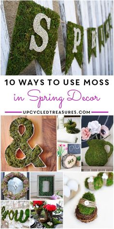 10 Ways to Use Moss in Spring Decor | UpcycledTreasures.com