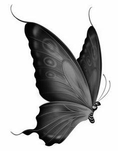 Kleuren voor volwassenen - vlinders