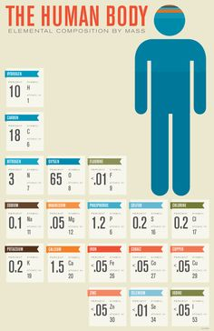 Other Infographics - The Human Body Infographic. The Human Body: Elemental Composition By Mass. Chemistry Lessons, Science Lessons, Life Science, Science And Nature, Science Classroom, Teaching Science, Body Composition, Body Systems, Organic Chemistry