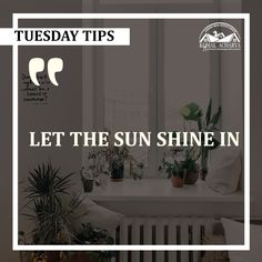 Here is a wonderful tip for you all to bring in some positivity in your house. Keep ample amount of windows to let the sunlight flow in Real Estate Services, Luxury Real Estate, Sunlight, Property For Sale, Luxury Homes, Flow, Positivity, Windows, Let It Be