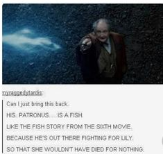 """he was casting protection spells at this time such as """"protego maxima"""" and """"fianto duri"""" would've been feels-asf-sy if that was his patronus tho"""