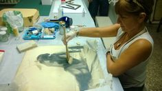 RestaurayConservaObras de Arte: Fotografia - Conservación