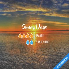 Sunny Days - Essential Oil Diffuser Blend