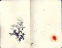 moleskine06 by Javier Casas | Moscko, via Flickr