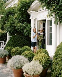 Oscar De la Renta Conn Round boxwood hedges in the garden Outdoor Rooms, Outdoor Gardens, Outdoor Living, Beautiful Gardens, Beautiful Homes, Beautiful Buildings, Dream Garden, Home And Garden, Pot Jardin