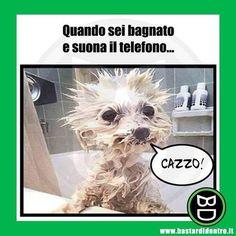 #bastardidentro #doccia #telefono www.bastardidentro.it