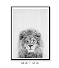 Lion Print Nursery Animal Wall Art Kids Room by LILAxLOLA on Etsy