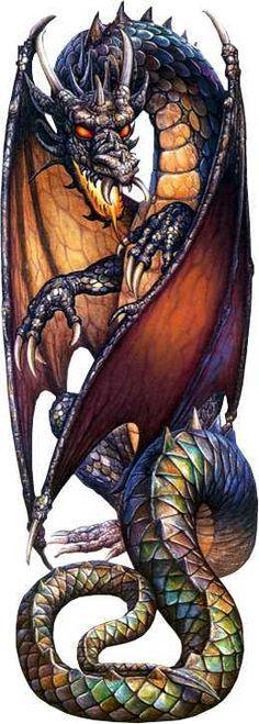 Tattoo Dragon Medieval Fantasy Art Ideas For 2019 Chinese Tattoo Designs, Dragon Tattoo Designs, Dragon Tattoos, Magical Creatures, Fantasy Creatures, Dragon Medieval, Medieval Fantasy, Cool Dragons, Dragon Artwork